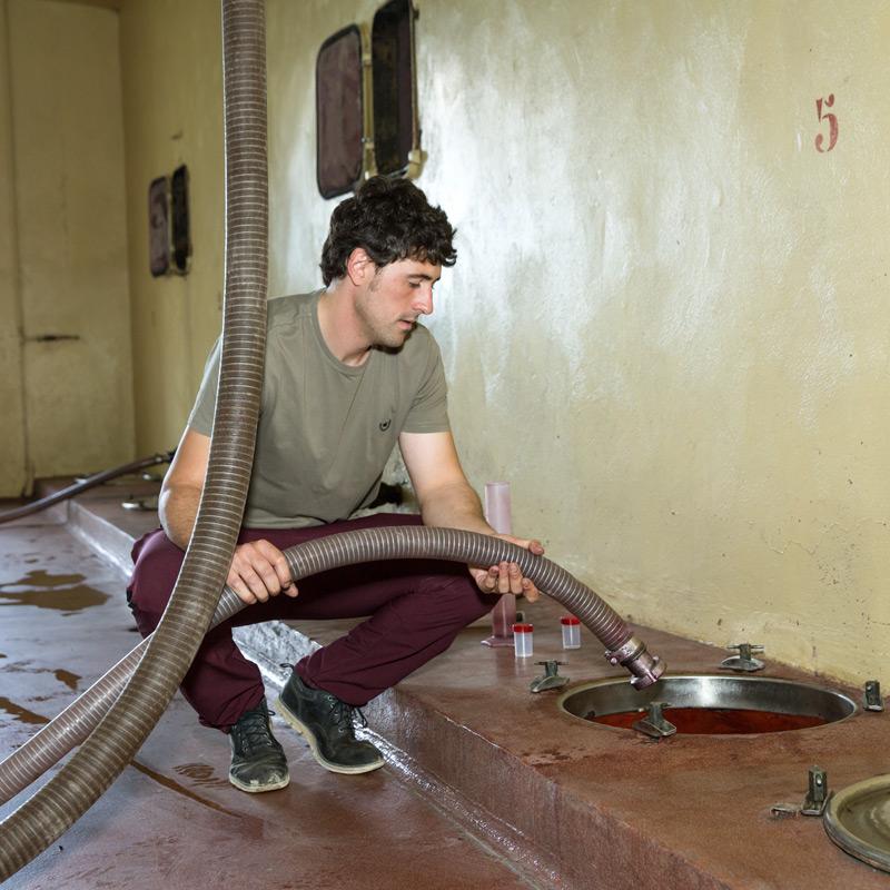 Israel en pleno proceso de elaboración de los vinos en Bodegas Eguíluz